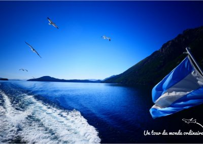 navigando-mouettes