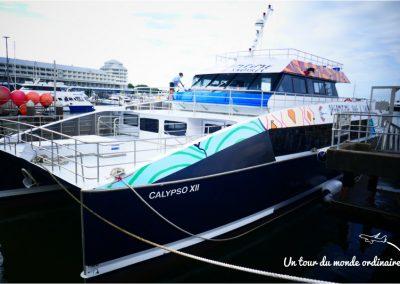 cairns-embarquement-calypso12