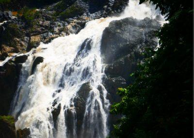 cairns-kuranda-baron-falls