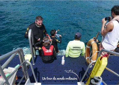 cairns-snorkeling