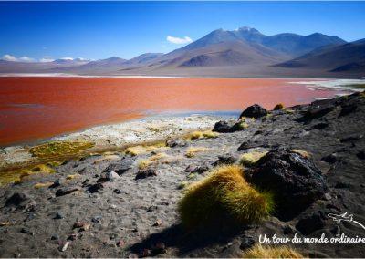 sudlipez-laguna-colorada