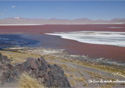 sudlipez-laguna-colorada-borax