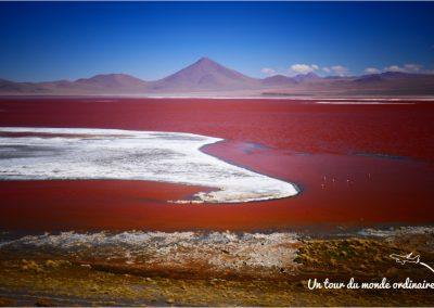 sudlipez-laguna-colorada-paysage