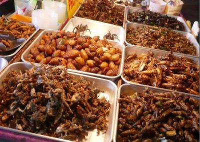 bangkok-khao-san-road-insects
