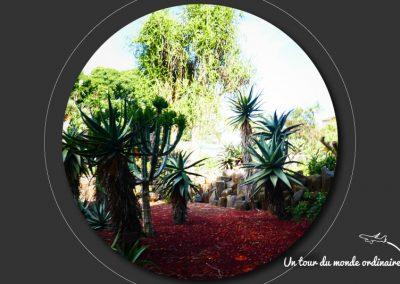 sidney-royal-botanic-park1