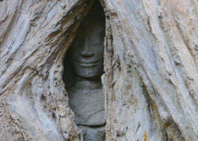 angkor-ta-prohm-bouddha