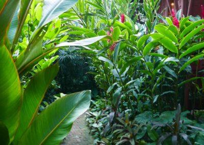 bangkok-jim-thomson-jardin