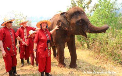 Chiang Mai, avec les éléphants