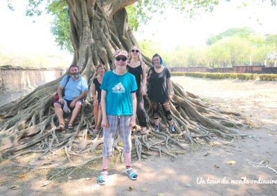 sukothai-parc-historique-racines
