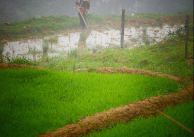 sapa-village-traditionnel-jeune-maman